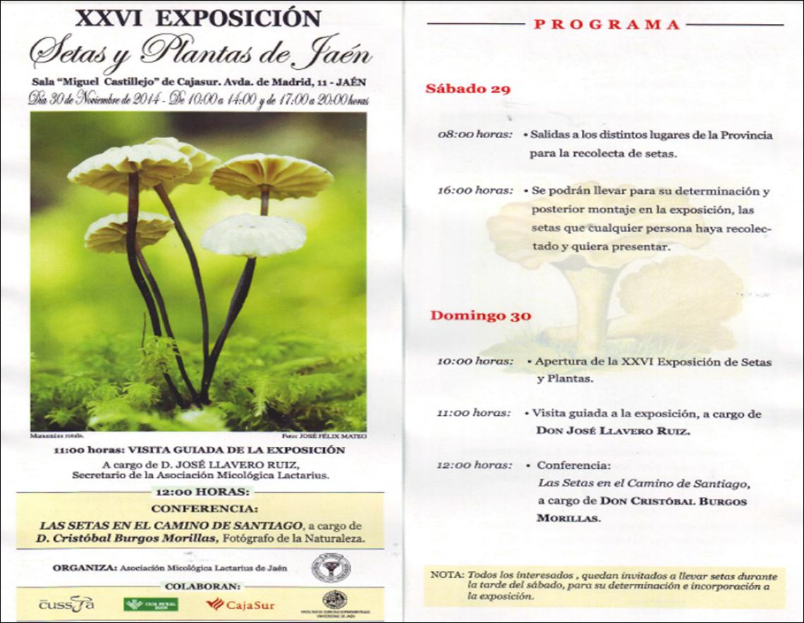 XXVI Exposición Setas y Plantas de Jaén