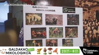 Galdakao Micológico 2017