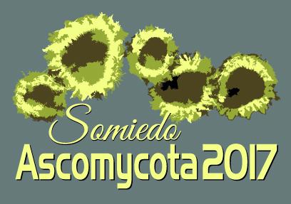 SOMIEDOASCOMYCOTA2017LOGO_2017-01-25.jpg