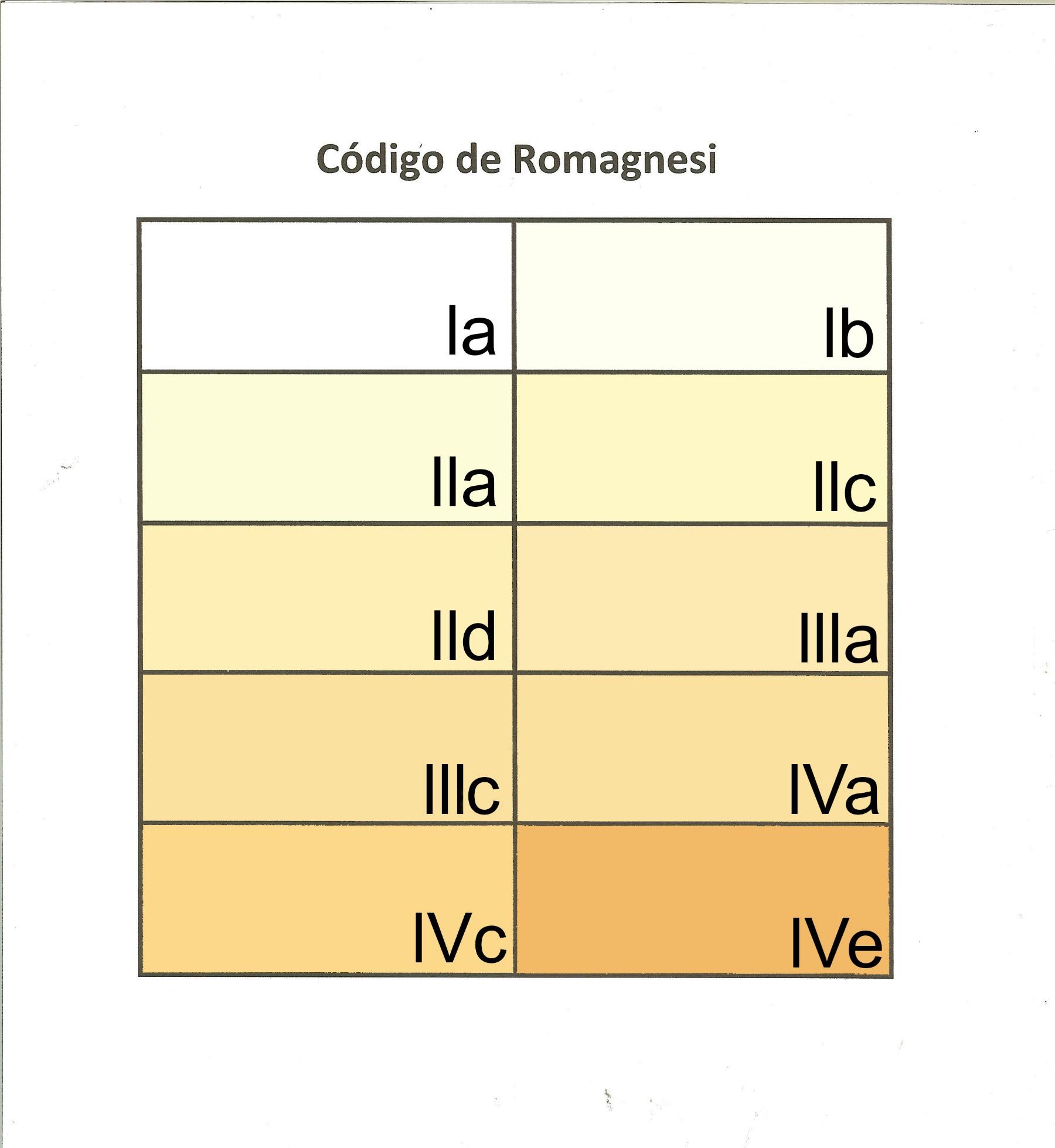 CdigodeRomagnesi.jpg