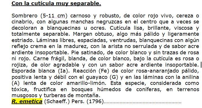 DescripcindeJosebaMatabuena.JPG