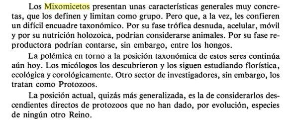 Mixomicetos3.JPG