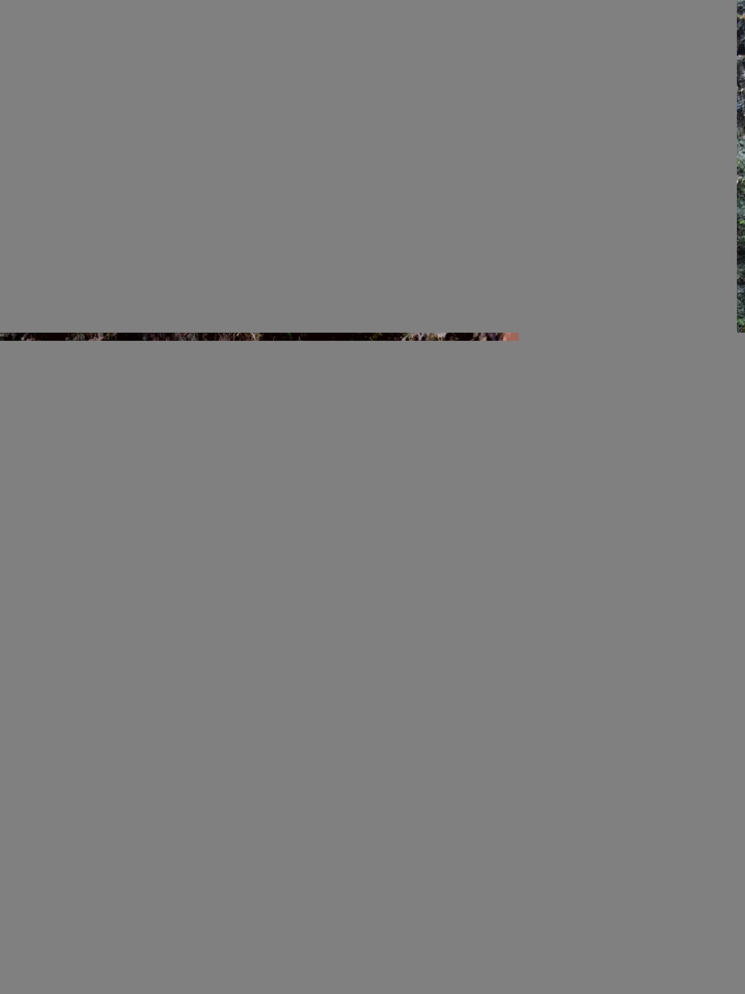849739C7-BF3B-4DC6-868B-D84F0A1FFB8A.jpeg